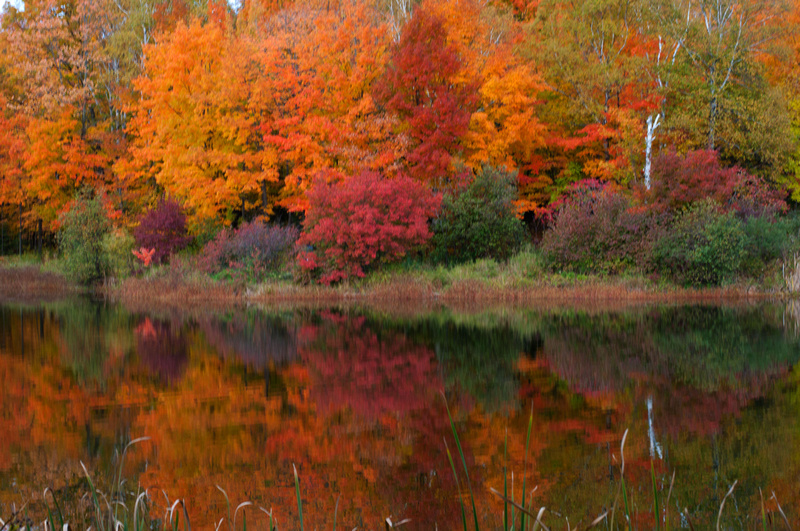 Zenfolio | Northwoods Photography | Duluth MN Fall Colors